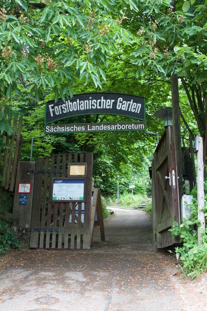 Eingang Forstbotanischer Garten Tharandt